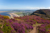 Views from Conwy Mountain