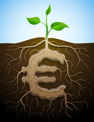 Roots and tuber in form of euro symbol sprout. Vector image