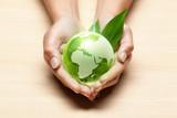 planète terre mains écologie