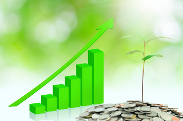 tree growing on moneys with green graph