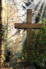 Friedhof 25