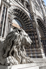 Lion statue of Saint Lorenzo church
