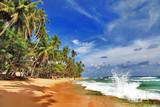 Fototapety wild beautiful beaches of Sri lanka