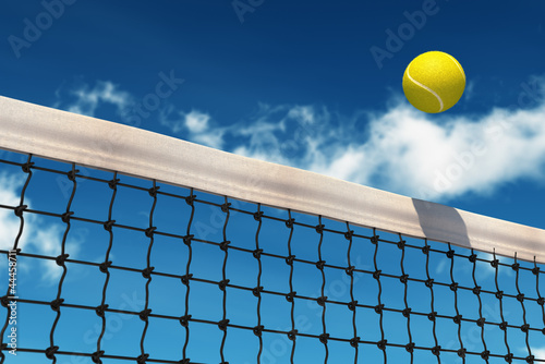 canvas print picture Tennis Ball over Net