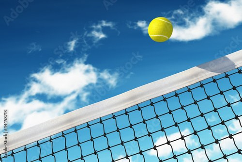 Tennis Ball over Net