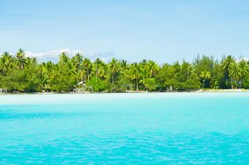 Paradise colors!