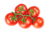 branch with red and fresh tomatoes isolated on white