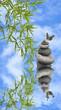 concept zen thérapie relaxation détente