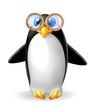 pinguino occhialuto