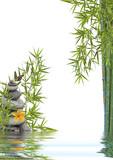Fototapety concept nature détente, bien-être, relaxation