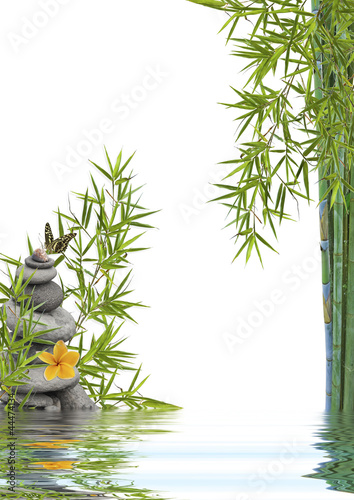 Foto op Canvas Frangipani concept nature détente, bien-être, relaxation