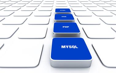 3D Pads Blau - HTML CSS PHP MYSQL 8
