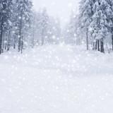 Fototapety Schneefahrbahn