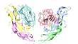 Folicle stimulating hormone coupled with its receptor