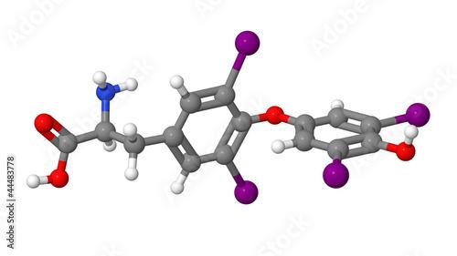Thyroxine (T4) molecular model