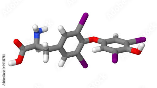 Thyroxine (T4) sticks molecular model