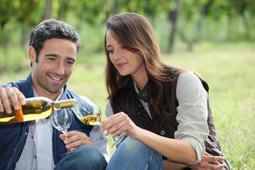 Wine Tasting in the field