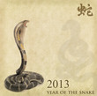 silhouette of New Year Snake 2013