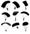 Big collection of parachutists in flight. Vector illustration