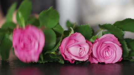 Pink roses laying on the black background