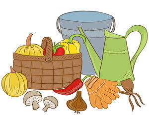 Illustration of garden tools and harvest basket
