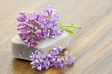 bar of natural soap and lilac flowers