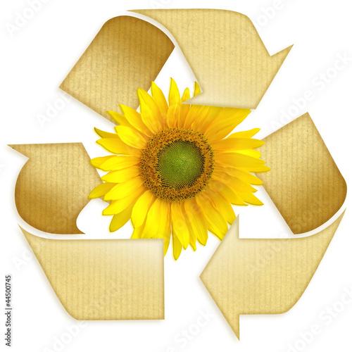 recyclé kraft 01