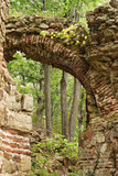 Ancient roman Balkan fortress arch ruin in forest poster