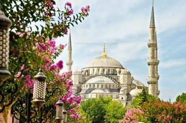 View of Santa Sofia, Istanbul