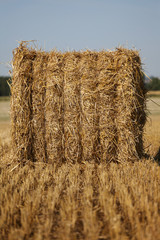 Close up on the lines of field and hay bale
