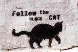 black cat graffiti - 44511373