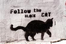 Czarny kot Graffiti