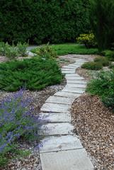 Winding landscaped path