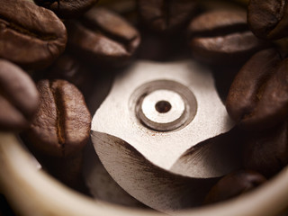 Close up of coffee beans in grinder