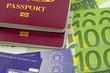 uk bio passports health cards euros