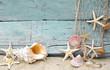 Maritime Urlaubserinnerung: Muscheln und Seesterne - 44514966