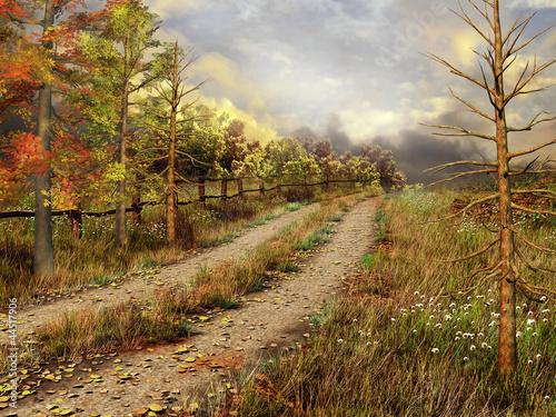 Jesienny krajobraz z wiejską drogą przez las