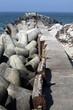 Tetrapoden auf Helgolands Düne