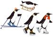 Pinguine beim Winterspor