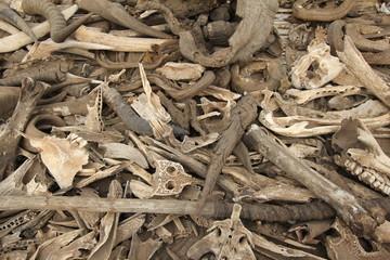 Voodoo Bones and Horns Fetish Market in Togo, Africa