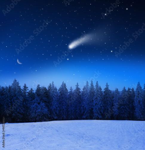 Sternehimmel über Winterwald
