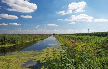 Canal through a Dutch landscape in summer