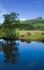 scotland, summer landscape