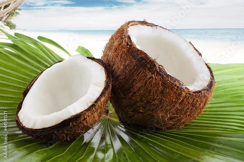 Fototapeten,braun,close-up,cocos,kokos