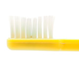 toothbrushes on a white background