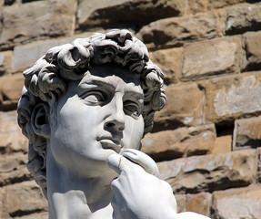 Head of Michelangelo's David