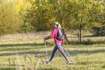 zügig gehen beim Nordic Walking