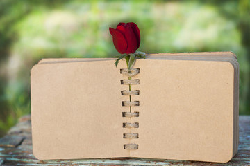 scrap book with roses