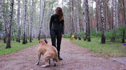 Young woman playing with a big dog