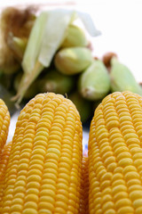 Fresh yellow corn cobs closeup